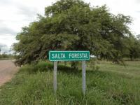 El Partido Obrero quiere más datos sobre el acuerdo en Salta Forestal