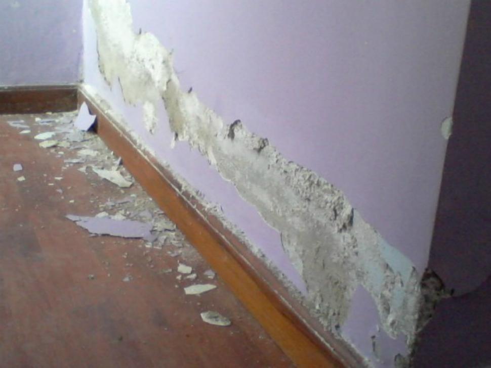 C mo eliminar el salitre de las paredes - Humedad en la pared ...