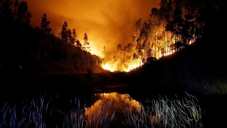 Asciende a 62 muertos por incendio en Portugal