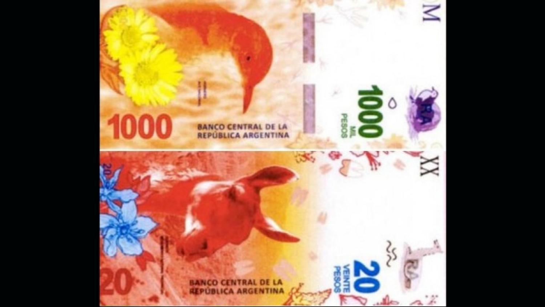 Entrarán en circulación nuevos billetes de 20 en Argentina