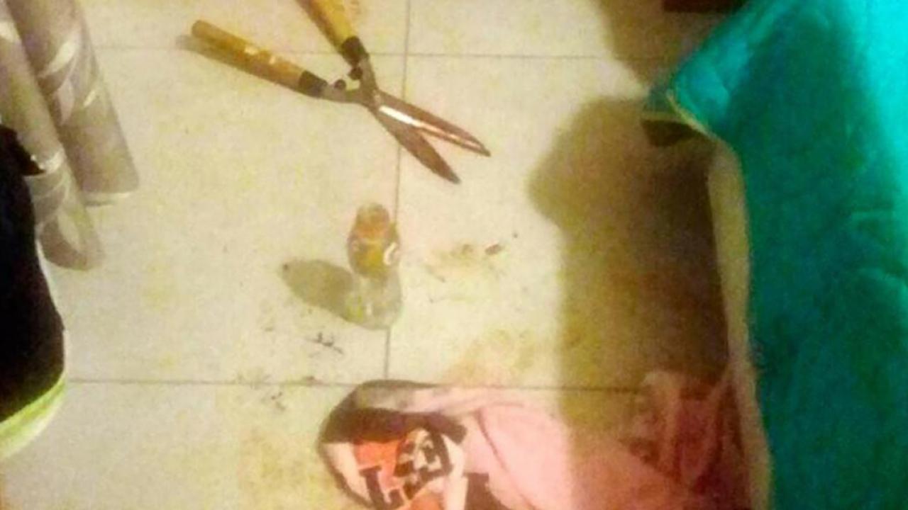 Mujer corta pene a presunto amante con tijera podadora — Conmoción en Argentina