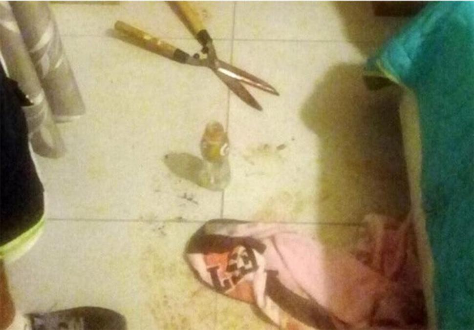Mujer mutila genitales de su