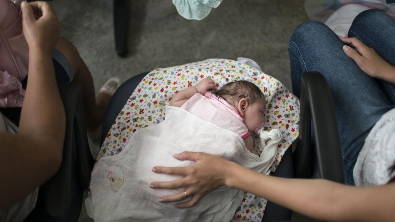 Zika en Argentina: confirmaron dos casos de microcefalia causados por el virus