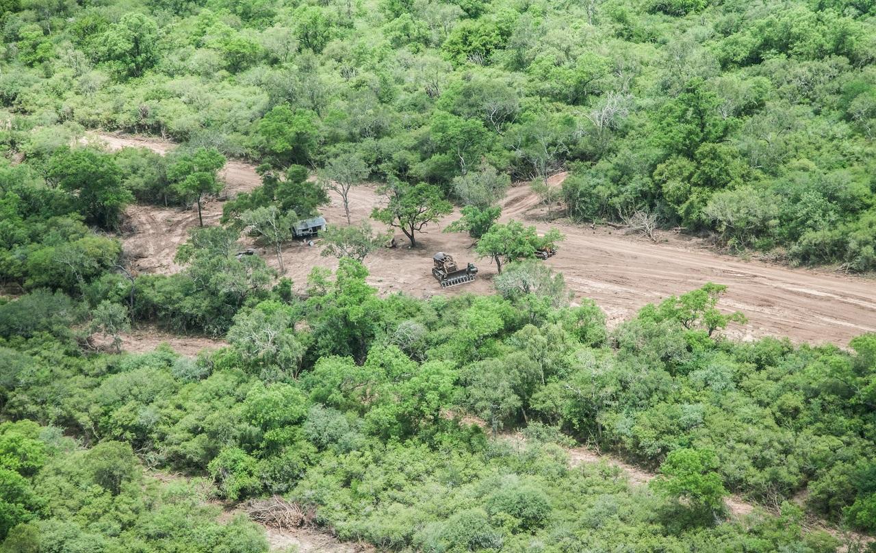 Exigen suspender los desmontes de bosques en Salta