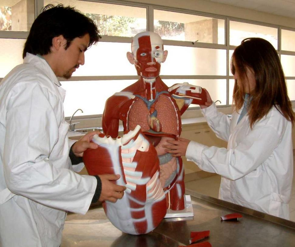 carrera medicina