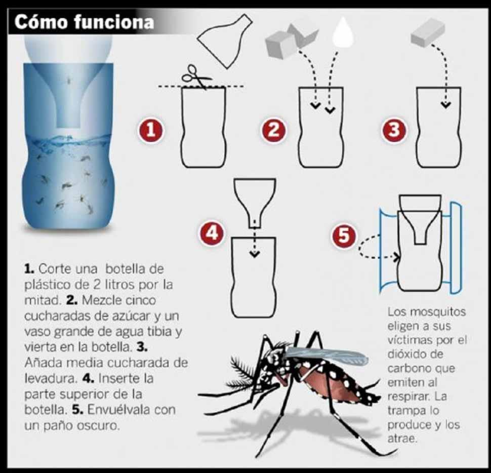 El m todo casero contra los mosquitos que se volvi viral for Como eliminar los mosquitos del jardin