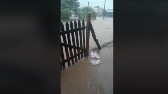 """Apolinario Saravia: """"nos golpeó de nuevo la tormenta"""""""