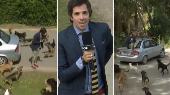 Robertito Funes peleó por su vida en un móvil en vivo