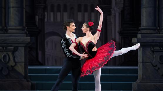 Agenda del finde: llega el ballet de Don Quijote, el humor de Diego Reinhold y la música de Perro Ciego
