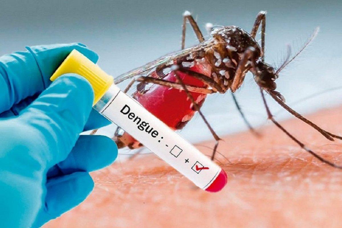 Confirman tres casos de dengue en Salta