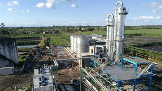 Industriales pidieron al Presidente medidas para sostener la producción de bioetanol