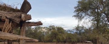 El coronavirus para los wichi: bosques destruidos y su tierra diezmada