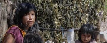 Crónica del desalojo en la comunidad Yokwespehen de Tartagal (Salta)