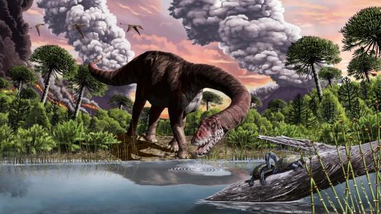Chubut: el hallazgo de una especie de dinosaurio ayuda a comprender el período volcánico
